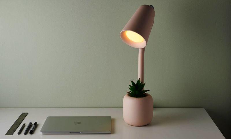 Storage-Integrated Desktop Illuminators
