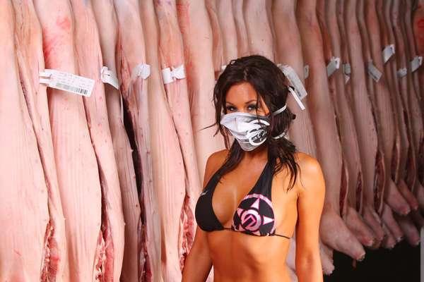 Swine Flu Parodies