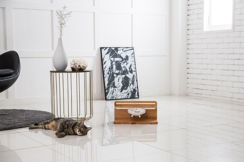 Elevated Feline Dining Sets