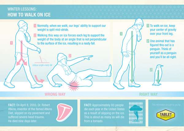Fatal Ice Fall Charts