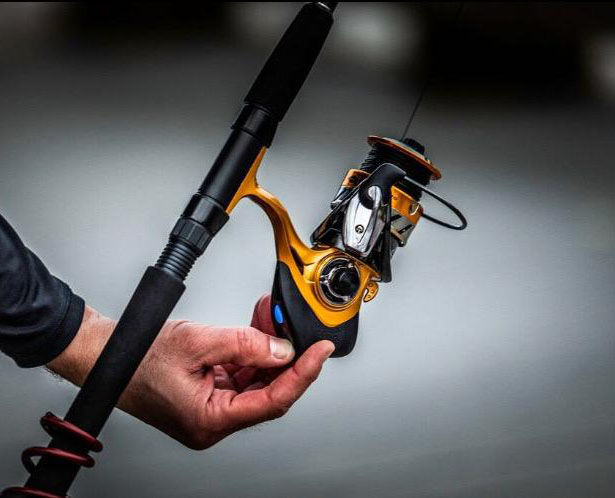Connected Fish-Detecting Devices