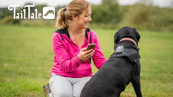 Live-Streaming Canine Health Trackers