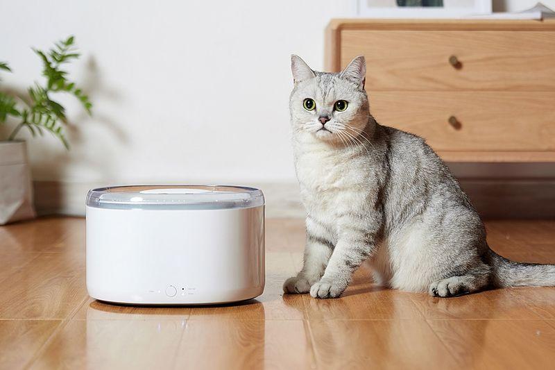 Circulating Purification Pet Bowls