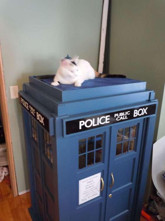 Kitty Phone Booth Furnishings