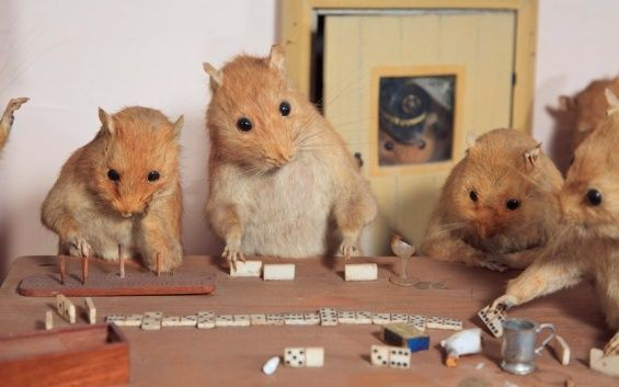 Posed Taxidermy Storylines