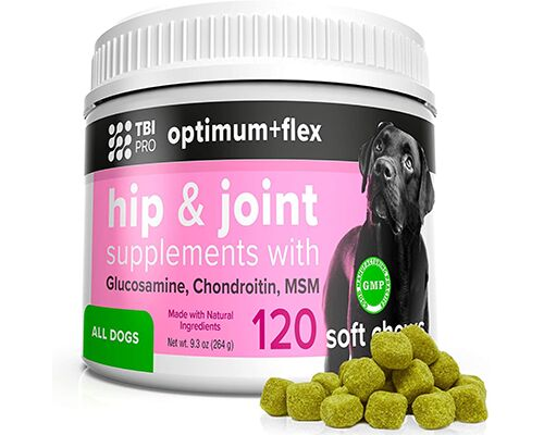 Canine Joint Support Supplements