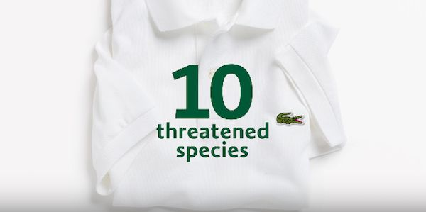 Endangered Species Campaign Shirts