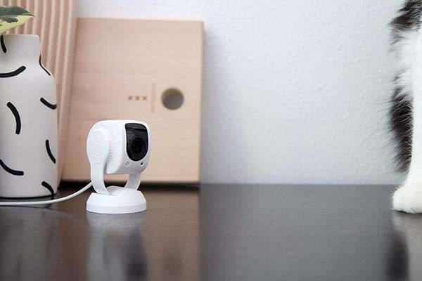 Low-Cost Livestream Security Cameras