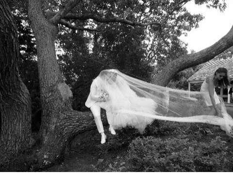 Phantom Wedding Photos