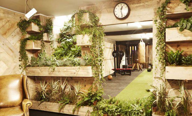 Eco Human-Powered Gyms