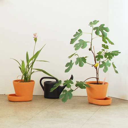 Easy Street Plant Pots