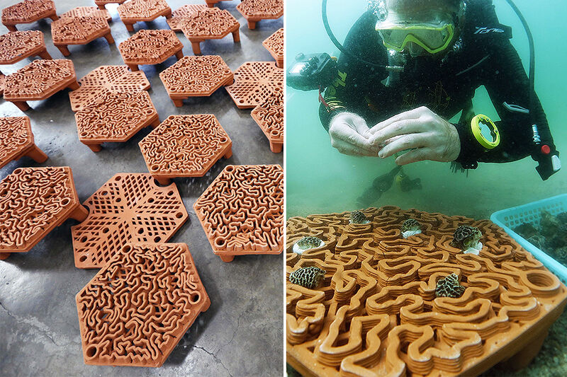 3D-Printed Coral Support Tiles