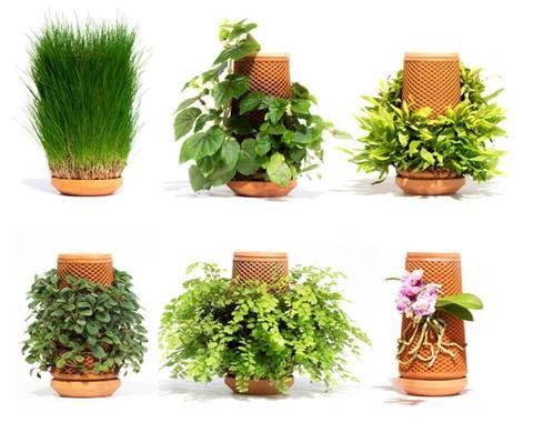 Reusable Hydroponic Planters