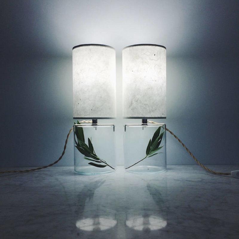 Paper Terrarium Lamps