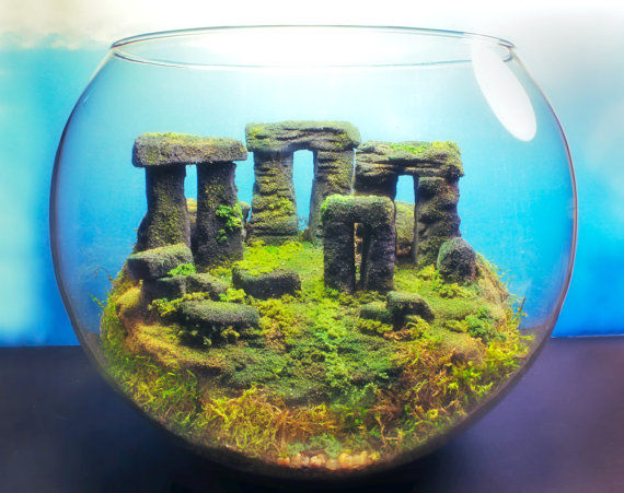 Mossy Landscape Dioramas Update Terrariums By Tony Larson