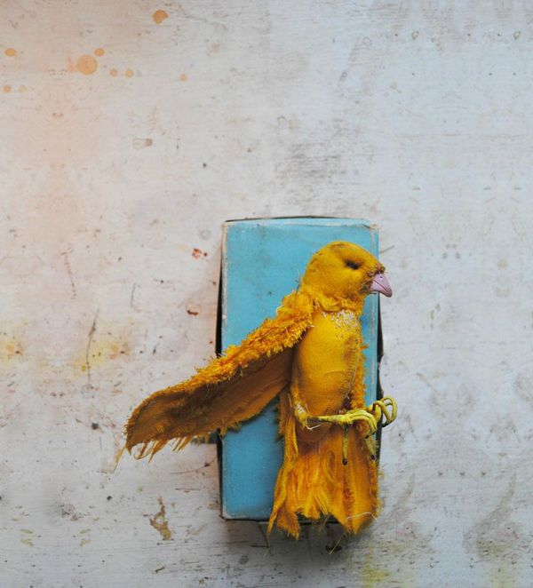 Recycled Material Animal Art