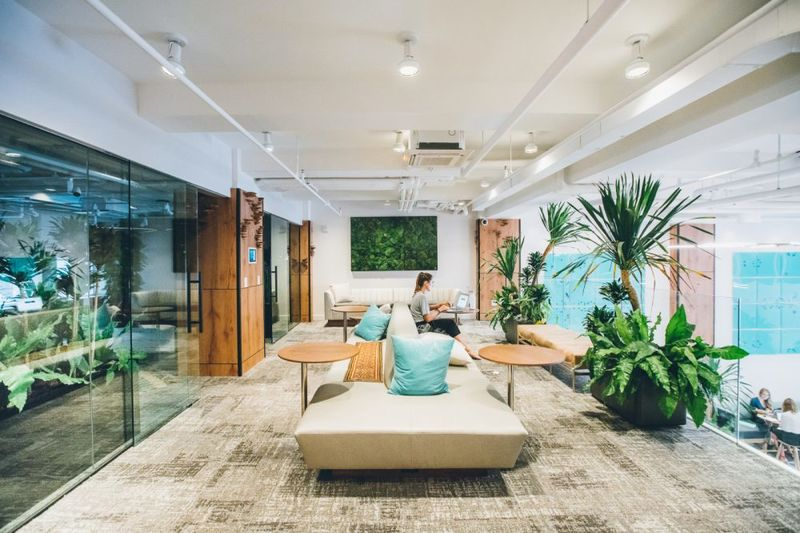 Professional Transformation Co-Working Spaces