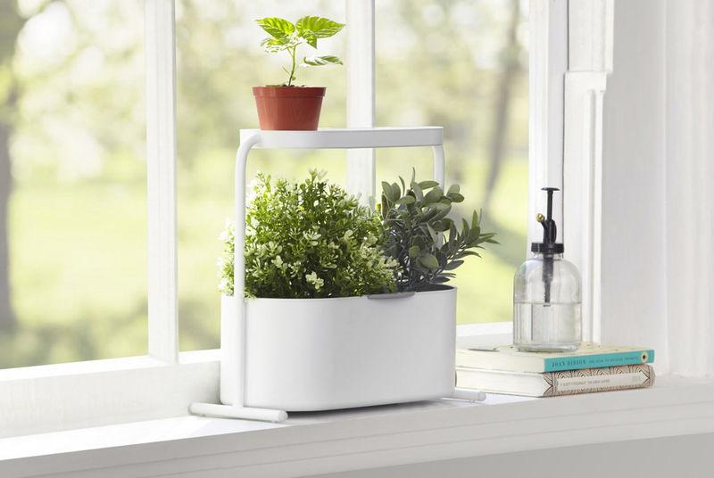 Simple Herb Garden Sets