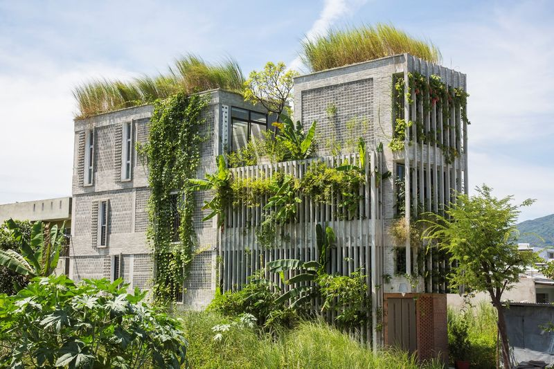 Ivy-Covered Office Spaces