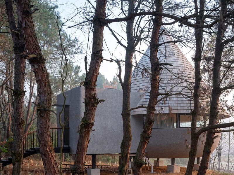 Nature-Based Angular Architecture