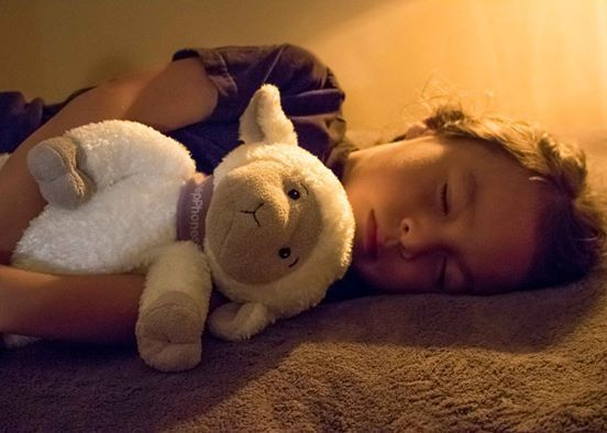 Sleep-Assisting Sheep Toys