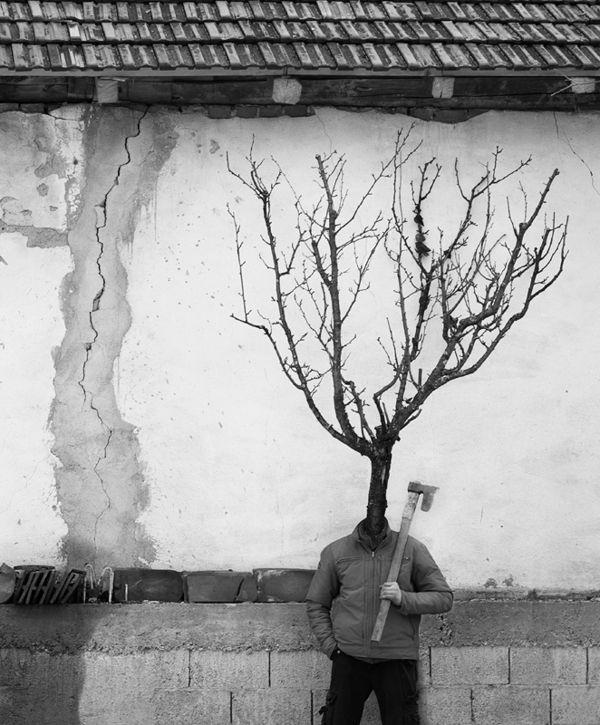 Tree People Photography