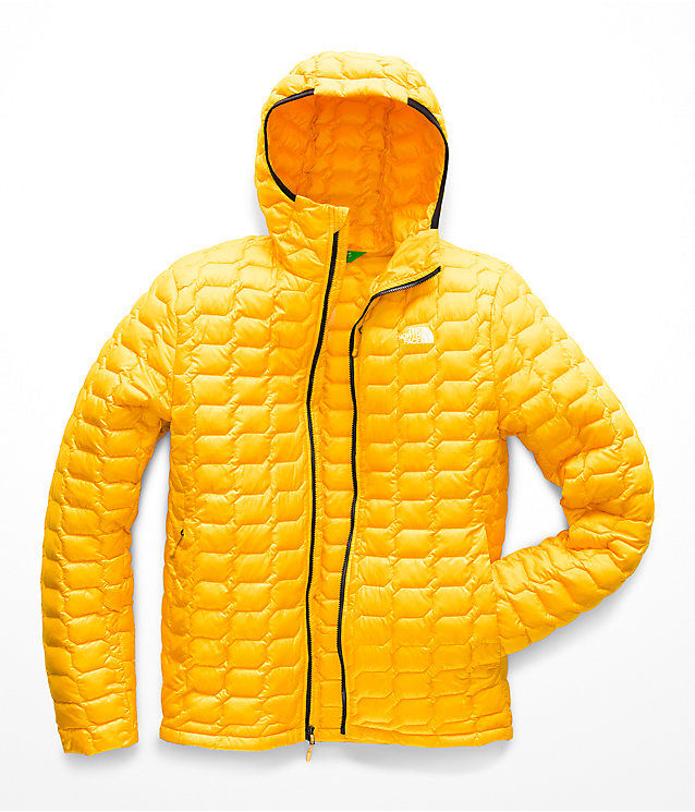 Insulated Eco-Conscious Jackets