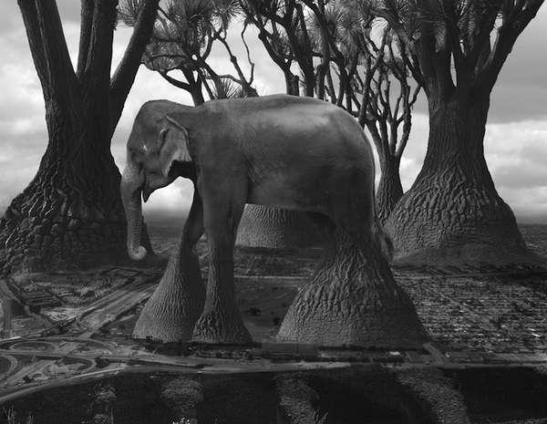 Merging Surrealist Photography