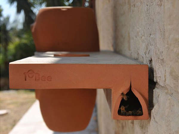 Bookshelf Bug Habitats