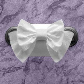 Elegant Toilet Paper Folds
