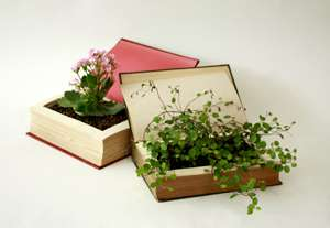Books as Flower Pots