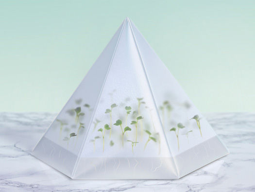 Modular Pyramid Planters