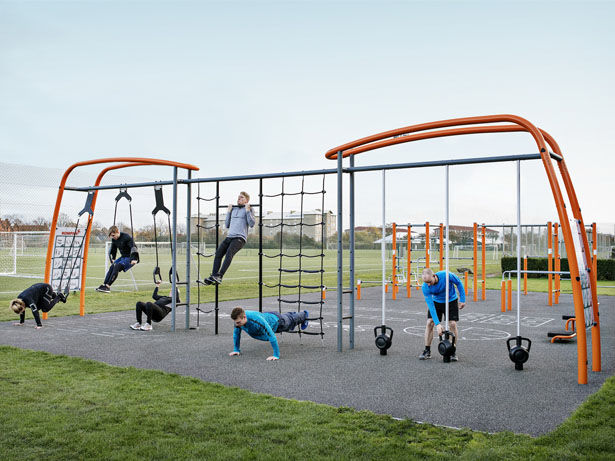 Adult Fitness Jungle Gyms Training Systems