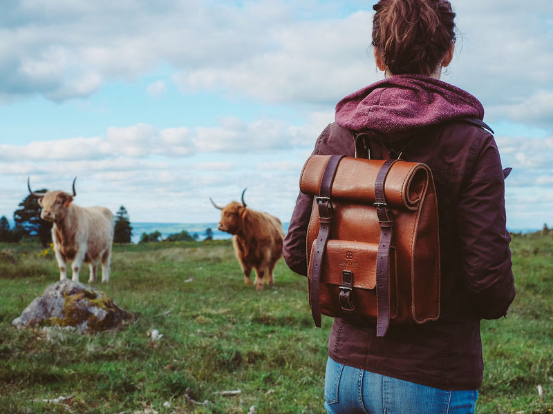 Vintage-Style Travel Leather Bags