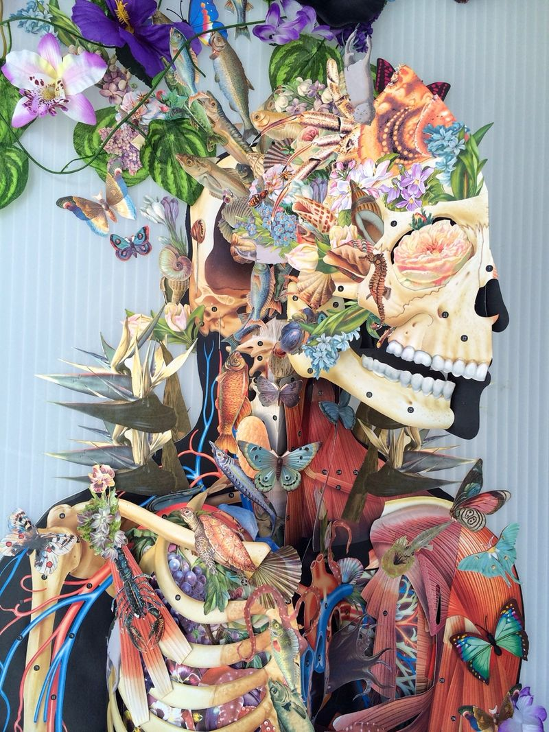 Whimsical Anatomical Collages (UPDATE)
