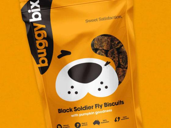 Bug-Based Dog Biscuits