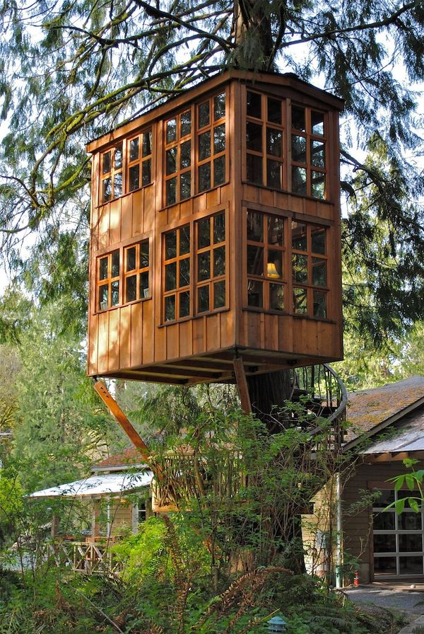 Concealed Tree House Hotels