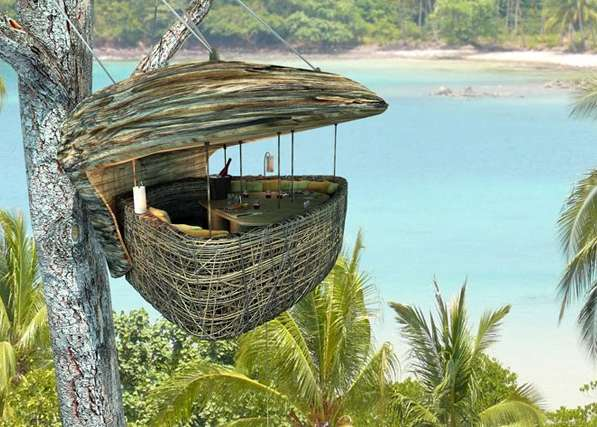 Bird Nest Restaurants