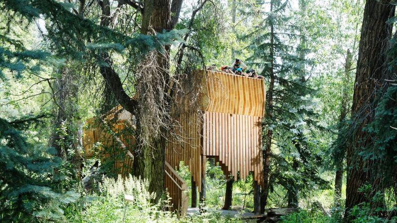 Refurbished Treehouse Designs