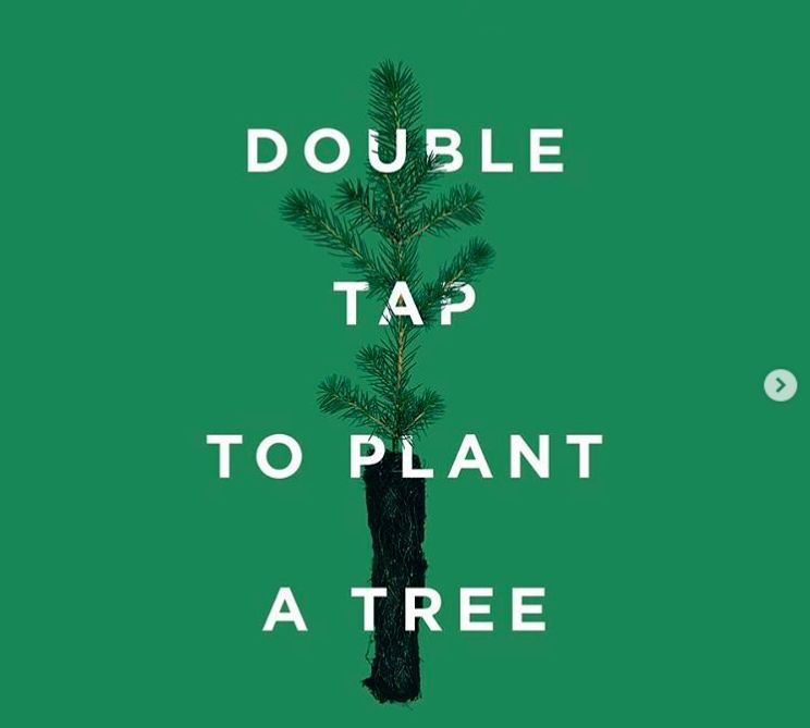 Social Media-Savvy Tree-Planting Campaigns