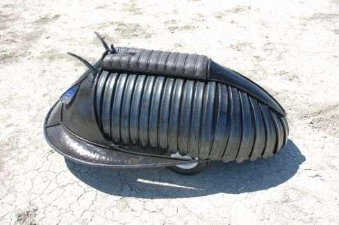 Metal Beetle Rides