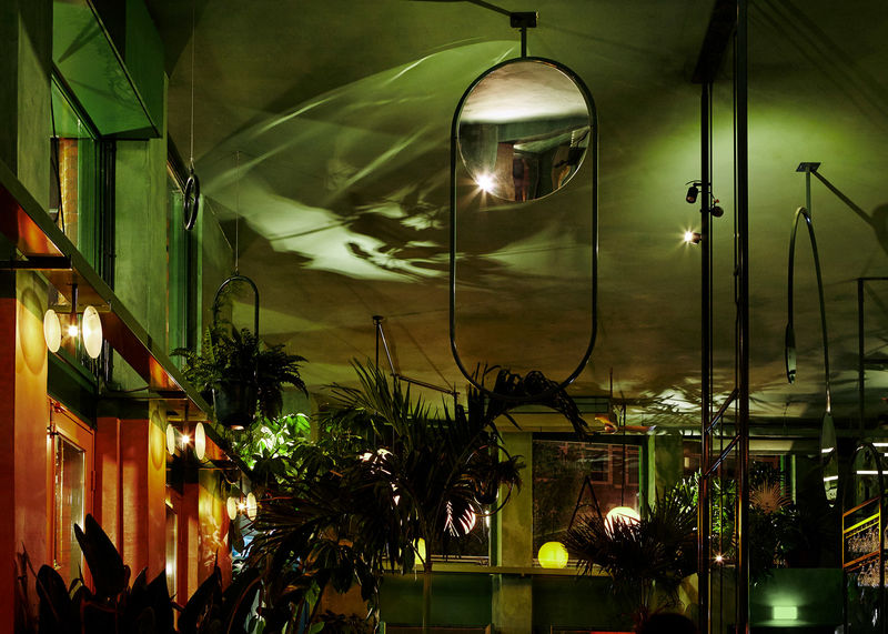 Rainforest-Inspired Bars