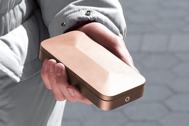Protective Biometric Wallets