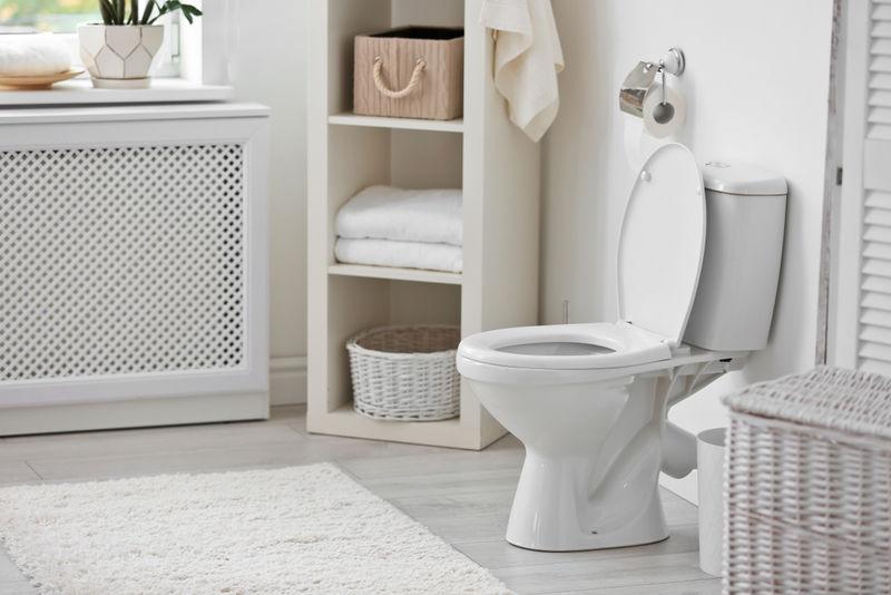 Toilet-Monitoring Health Tools
