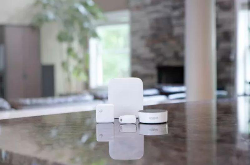 Home-Integrated Senior Monitors