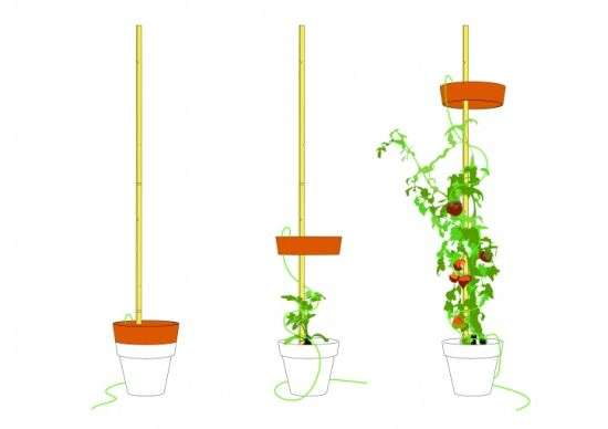 Planter Floor Lamps