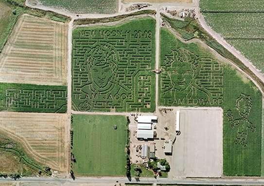 Vampire Corn Mazes