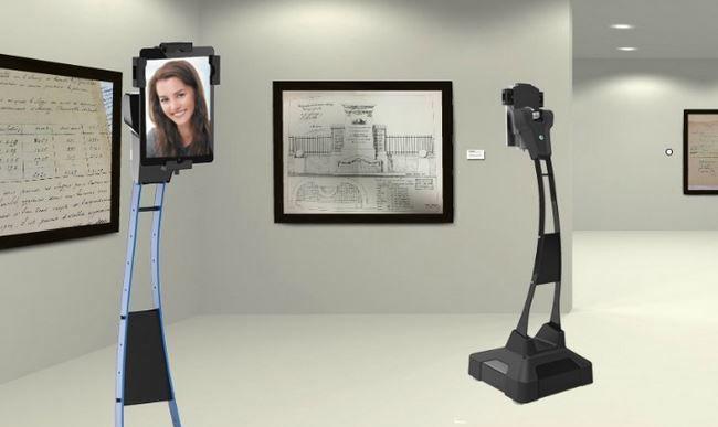 Customizable Telepresence Robots