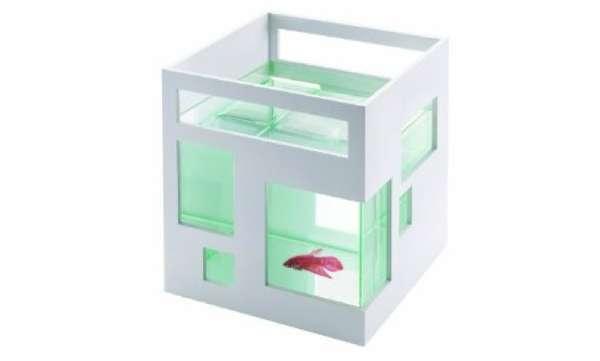 Fab Fishy Flats