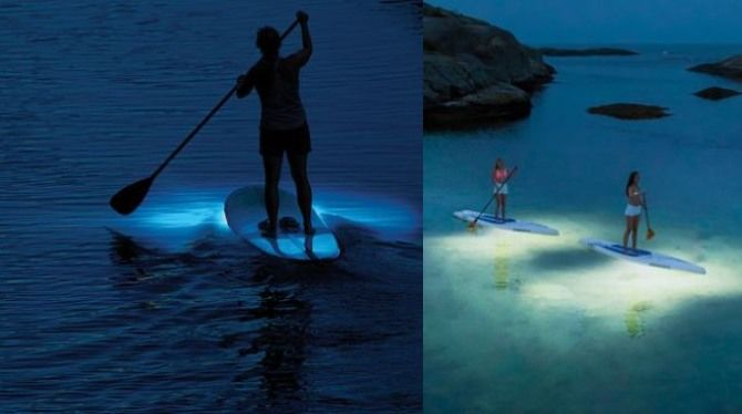 Enchanting Paddle Board Illuminators Underwater Lights
